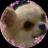 The profile image of kasumi524
