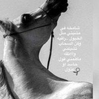 @alshamkhah4