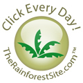 RainforestSite Social Profile