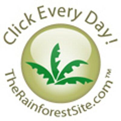 RainforestSite