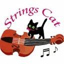 Strings Cat・猫と音楽♪