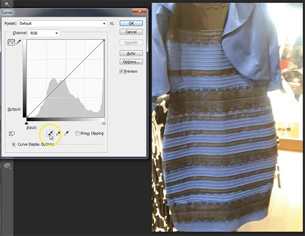 Can't handle the amount of people talking about the white/gold black/blue dress. It was always black and blue. Proof: http://t.co/tLtbgGwi7U