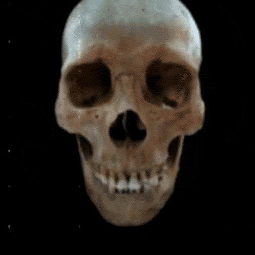 #Skull #Gif https://t.co/EXTaPqMC5q