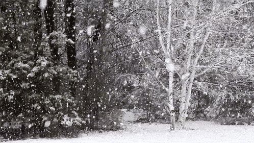 #Schnee in #Thüringen! Achtung, es ist stellenweise glatt. Kommt gut und sicher in den ersten Arbeitstag des neuen Jahres. #mondaymotivation https://t.co/BDbYzb0kNo