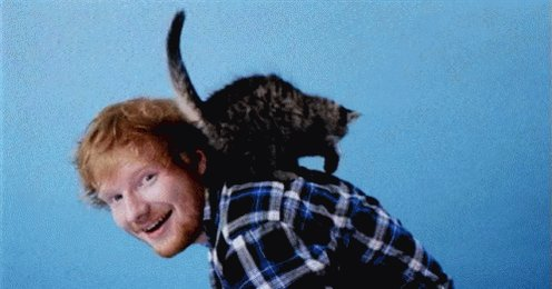 Happy 26th birthday to Mr. Ed Sheeran
