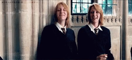 Happy Birthday and aka the  Weasley  Twins  From Harry Potter