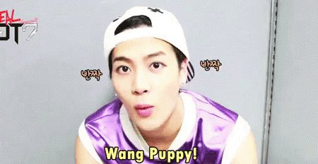 Happy birthday Kaka!!    KINGJACKSONDAY  Love you Wang Puppy