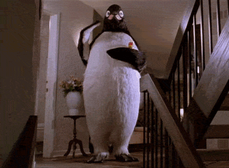 So long, Penguins. http://t.co/KD3EMYAkuF