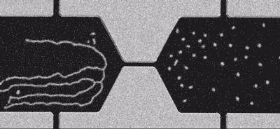 What if computer transistors were nanoscale quasiparticles? - http://t.co/C8TQukbkEJ http://t.co/euoFvI9buf