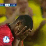 Svensk supporter skriker sopa åt portugis som precis sprungit offside #twittboll #U21EM http://t.co/Rx5StEdOjJ