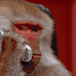 When Washington calls to let you know a guy named Kirk took your job and youre no longer needed. http://t.co/3BFxh8SkjQ