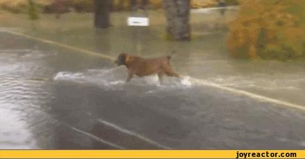 Taaaaaaaaaaaaaaaantaaaaaa agua no hay http://t.co/JcwGi6KYVk
