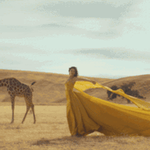 Check out this beautiful GIF from the #WildestDreams video. Screen shots will be added to our gallery later tonight! http://t.co/KaZK7e0X0P