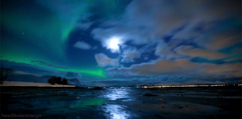 We swam among the #NorthernLights + hid behind the edge of night. ???? http://t.co/9l8o0uvg2G http://t.co/uixr4AfYLm