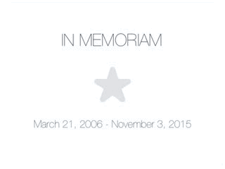 ⭐️ gone but not forgotten https://t.co/2BSnbM4sb7