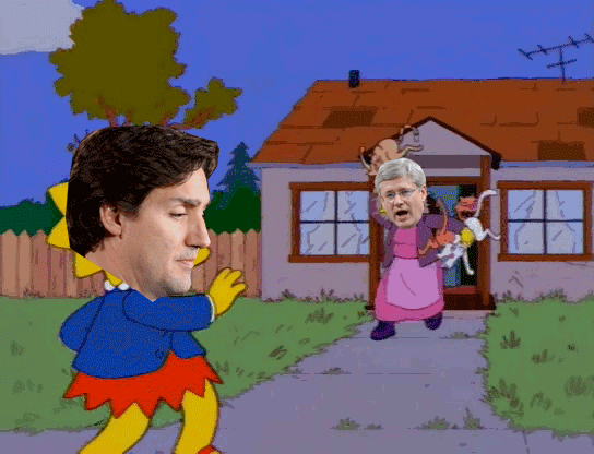 Live view from 24 Sussex Drive right now #cdnpoli #harpercats https://t.co/K6CrhC309C