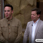 Great tongue action @antanddec fancy a go at The Steps To Hell? #ImACeleb https://t.co/xiuiTZRm04