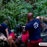 .@ChrisEubank deals with a mosquito in Camp #ImACeleb https://t.co/Td8nDRqxV2