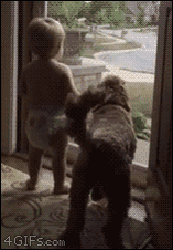 White Dog Blog: 4gifs: Baby and dog do a happy dance when Dad... https://t.co/uuItbtqZNO https://t.co/zsV5GXzyQv