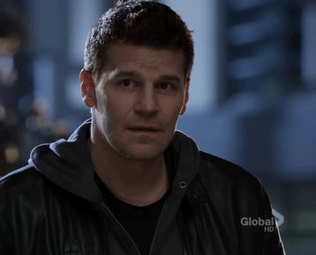 Happy Birthday to Buffalo born, David Boreanaz!
