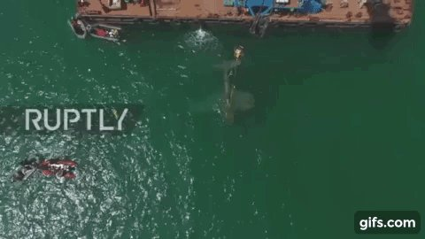 Drone captures lifting of US-made warplane that sank near Russia in
