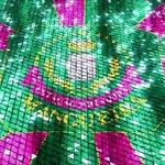 Mangueira é a campeã do carnaval do Rio 🎉🎉🎉 https://t.co/F1yvoxOU85  #G1 #Globeleza #apuracaoRJ https://t.co/bITvHKp26F