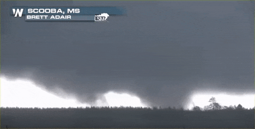 Video of wedge tornado in West AL. https://t.co/J0ATKfRgBe https://t.co/ngxdWqioel