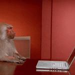"""""""Twitter ordenara timeline por popularidade"""" Rip Twitter https://t.co/bDVP4E1klj"""