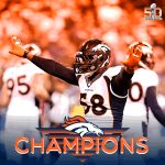 Let the confetti fall!  Hey Denver, the #Broncos just won the Super Bowl!!! #SB50 https://t.co/l74rZxgbJ6