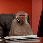 """""""Hello, #Telstra support, how can I help?"""" https://t.co/fkI5qnzbmP"""