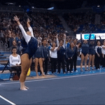 Watch her tumble. Watch her whip, Watch her nae nae. https://t.co/Z2hhekLmfD https://t.co/GZQ8ouNDg8