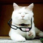 Specs or nah? https://t.co/LZgceaZPRl