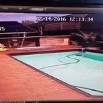 Home videos show pool water turning into waves as #ChristchurchEarthquake hits https://t.co/giaOThe948 https://t.co/hWM6v4tWKi