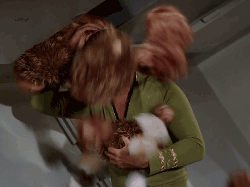 All the beards will probably make @WilliamShatner relive this.  #CutthroatKitchen https://t.co/ZWsiVnKHzJ
