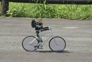 Some things, like riding a bike, can't be taught by a book or with rules. They have to be learned. #2MA #AI https://t.co/egqp7HTGt9
