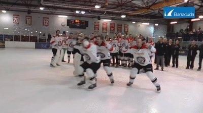 @Karps13 @hyadlo @JarolinRene and Miro give the title celebration an NHL94 feel @TVBison @BisonHockey https://t.co/JRGxqYSfgB