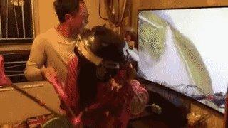 世上最棒的虚拟现实技术 https://t.co/XULQeJbrlW