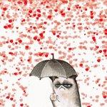 A veces recibimos todo el amor del mundo y por no sé qué actitud idiota nos lo perdemos. Bota ya ese paraguas. https://t.co/6C6UXFZgaE