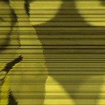 Kaptanın liderliğinde Berlinde sahaya çıkmaya 10,Euroleague şampiyonluğuna 12 gün kaldı #SarıTribün #YellowInvasion https://t.co/NdlCB9pQPI