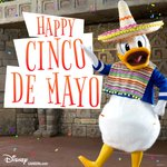 Happy #CincoDeMayo everybody! https://t.co/uApH6rYIZX https://t.co/enYeabjA4k