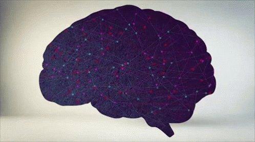 La mente es un laberinto donde la realidad se #transforma según sea la perspectiva https://t.co/Vq6WGANdUR