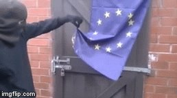 Peak #Brexit: UK protestor tries to burn the EU flag, but can't, because of EU regulation on flammable materials https://t.co/BiKKKAMms1