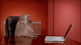 """I like it! Do it over.""  #animatorproblems #Mondays  #businessMonkey https://t.co/ctAMj1zcEf"