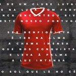 Uma camisola única! ???? @adidasfootball @SLBenfica https://t.co/D4yfWgBVU5