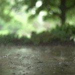 Inicia la lluvia en Guadalajara y Zona Metropolitana ¡Cuidado Tapatíos! ☔  #LluviaGDL https://t.co/YBf9QqRrVz