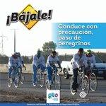 🚴⚠#BÁJALE Peregrinos ciclistas en carr. #Irapuato-#Silao altura La Baraña. Extrema precauciones. | @AlvarCdeV https://t.co/CUBJahsg0d