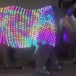 Come and see @GreatBigRhinos #technorhino this Friday (26 August) @RAMMMuseum #Exeter #Devon 10-5pm @adafruit #tech https://t.co/V4Ujjf3Uua