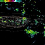 Showers associated with the strong tropical wave already affecting parts of PR &USVI. #prwx #usviwx https://t.co/CXFmg2ftHn