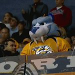 Looks like the @PredsNHL mascot is quite fond of the Edmonton Oilers new mascot. #NHL https://t.co/4cCwyDnZAd