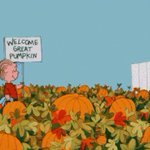 #MyOctoberWillBe full of searching for great Pumpkin 🎃💟 https://t.co/mEWSP1xXHb